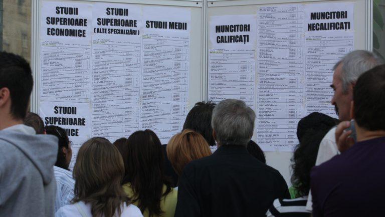 Peste 800 de locuri de muncă vacante în judeţ