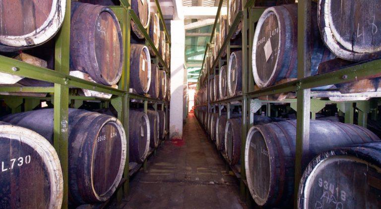 Fetească neagră, rubinul vinurilor românești