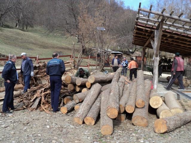 Firmă amendată cu 5.000 de lei din cauza afacerilor cu lemne