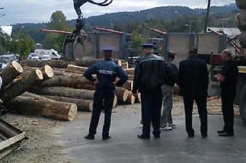 Afaceri necurate cu lemne taxate cu o amendă de 10.000 de lei
