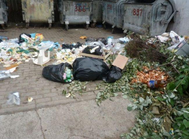 Botoşăneni amendaţi de Poliţia Locală pentru deşeuri aruncate pe domeniul public