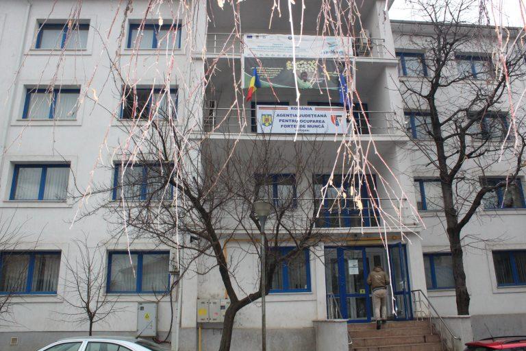Cursuri de calificare pentru șomerii din Botoșani