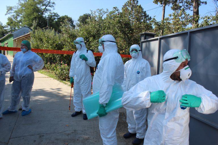 Focarul de pestă porcină africană de la Santa Mare a fost închis