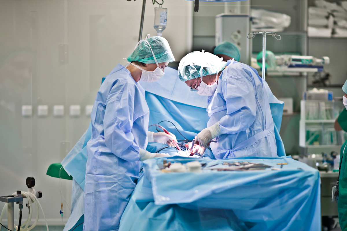 Muşcat de penis de un câine la Huedin. Medicii i-au cusut bietului om organul cu nouă copci!