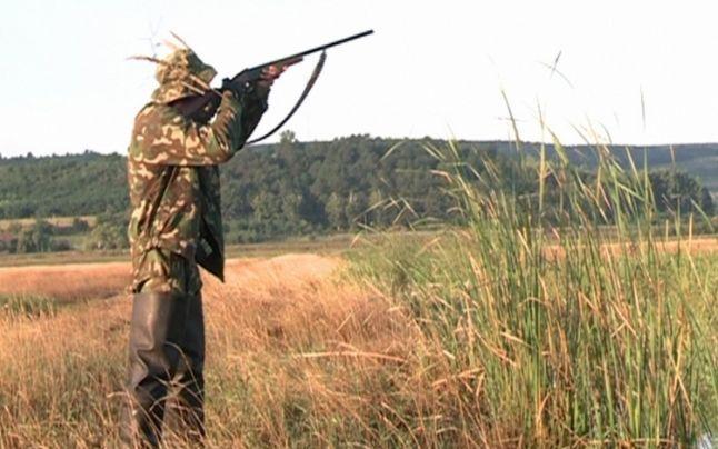Judecătorii interzic vânătoarea la păsări