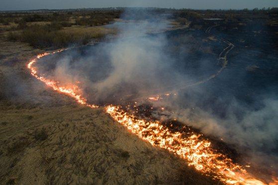 Brazilia REFUZĂ ajutorul oferit de G7 pentru stingerea incendiilor din Pădurea Amazoniană