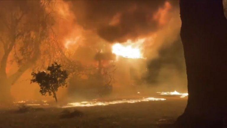 Incendiul violent în Delta Văcărești din Capitală