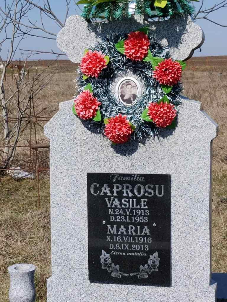 Un ultim omagiu adus academicianului Ioan Caproşu