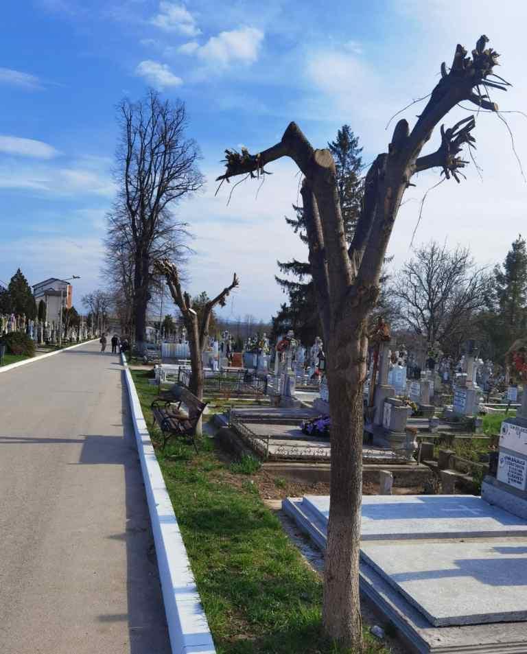 Muncitorii Urban Serv au avut front de lucru în cimitire şi pe Versantul Pacea