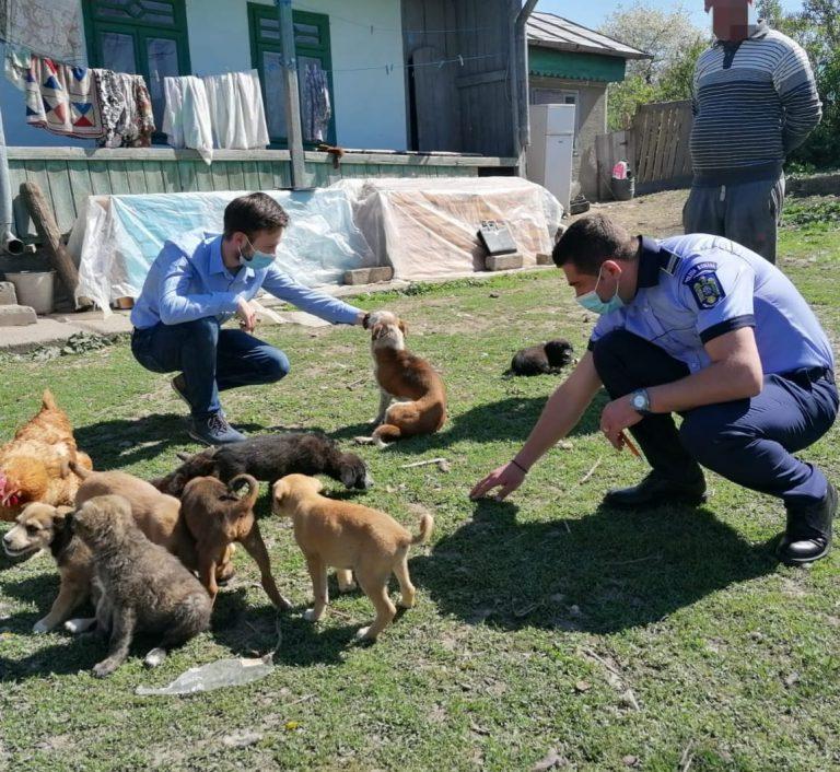 Căței salvați în urma intervenției polițiștilor de la Protecția Animalelor