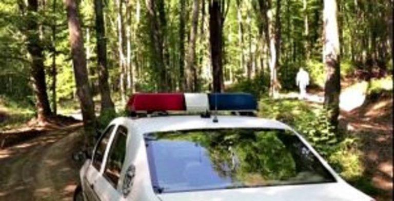 Anchetă a poliției în cazul unor animale ucise într-o pădure din județ