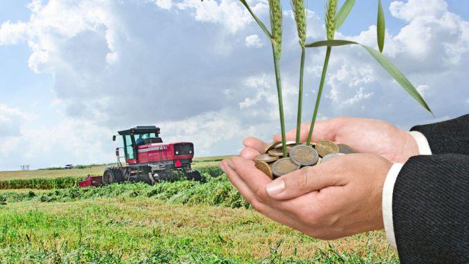 Fermierii continuă depunerea cererilor la APIA pentru subvenții