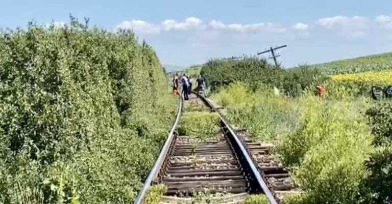 Viaţă încheiată sub roţile trenului