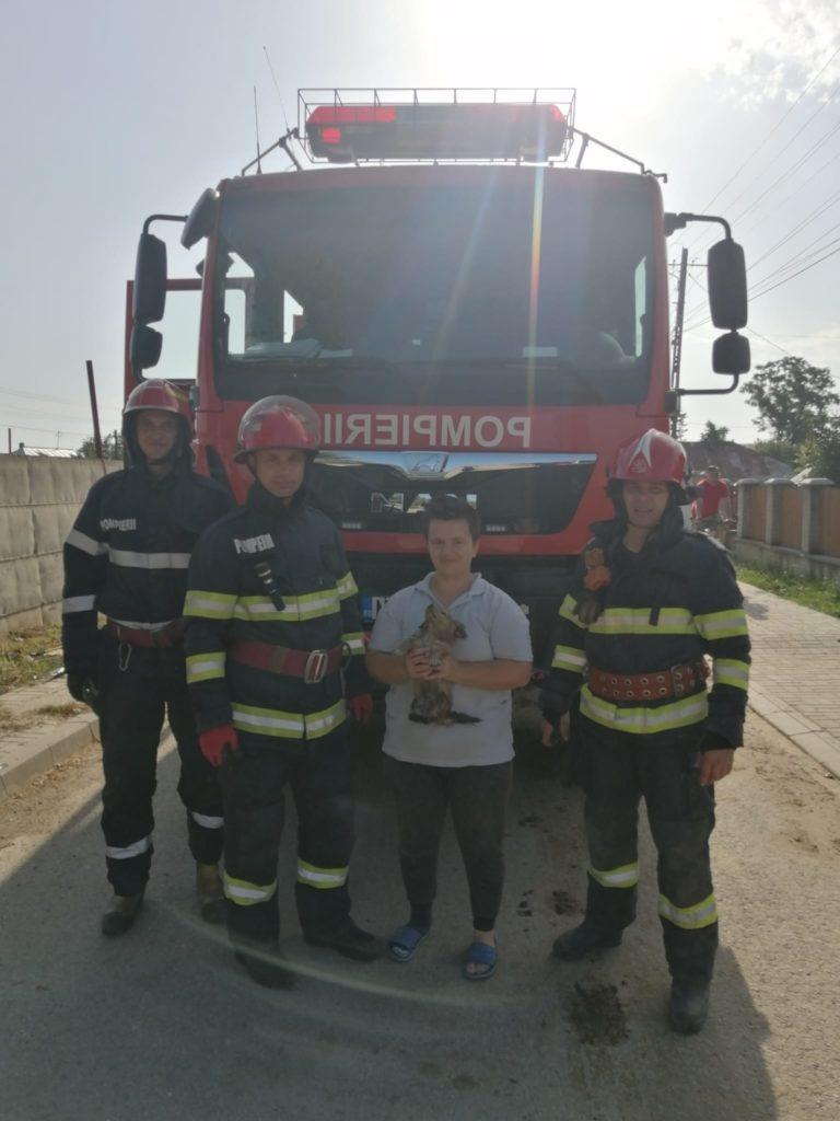 Cățel salvat de pompieri dintr-un canal adânc de doi metri. A fost adoptat imediat