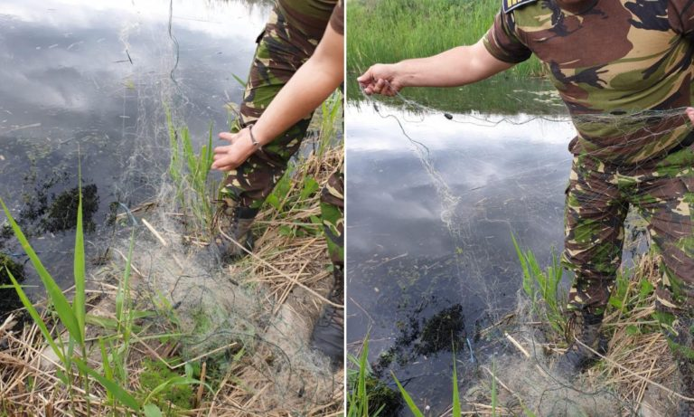 Braconieri lăsați fără plase. 700 metri de plase monofilament îndepărtate din râul Prut de polițiștii de frontieră