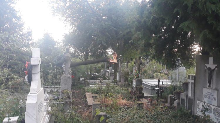 Monumente funerare refăcute pe banii municipalităţii