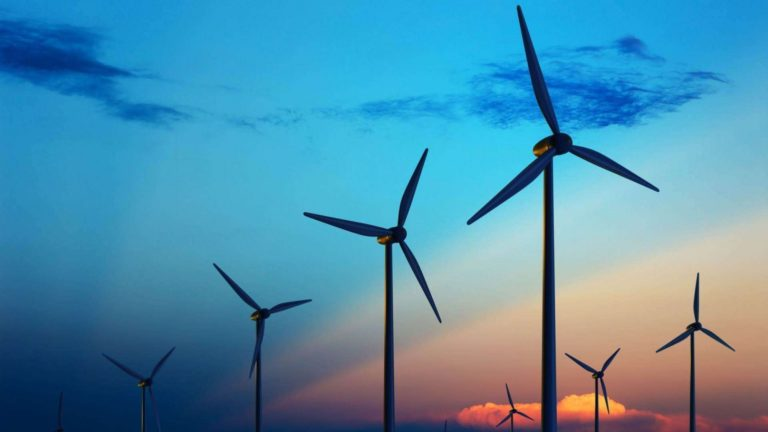 Promisiuni pentru o investiție uriașă în parcuri eoliene (video)
